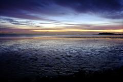 San Francisco Bay - Low Tide