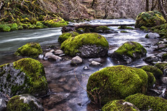 Nestucca River 1 (Jeremiah Leslie) Tags: people green oregon river landscape grey moss rapids pacificnorthwest hdr coastrangemountains nestuccariver pnwphotos pacificnorthwestphotos jlesproductions jeremiahleslie