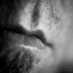 F.o.c.u.s.e.d. V (iEiEi) Tags: bw abstract macro monochrome closeup nikon dof skin availablelight nikond100 indoor depthoffield human sw concept d100 grayscale conceptual nikkor schwarzweiss bodypart konzept nahaufnahme nahlinse abstrakt schrfentiefe mensch haut achim closeuplens krperteil einfarbig schwarzweis innenaufnahme 50mmf18afd