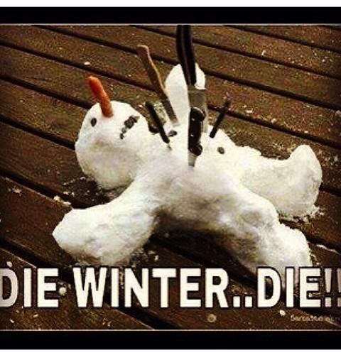 VIBE-Vixen-Cold-Weather-Meme