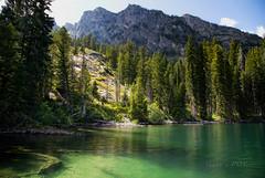 Jenny Lake (laura's POV) Tags: mountain lake nature jackson wyoming wilderness jacksonhole grandtetonnationalpark jennylake lauraspointofview lauraspov