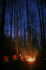 Campfire Under the Stars (Michael Hodge) Tags: camping campfire hiking frozenheadstatepark fhsp night outdoor recreation backpacking tennessee tennesseestatepark cumberland cumberlandmountains