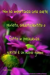 https://www.facebook.com/MossoTiziana/ #Tiziana #Mosso #Tizi #Twister #Titty #love #link #page #facebook #aforisma #citazione #frase #buongiornoatutti # Violet #Huber #flowers (tizianamosso) Tags: citazione tiziana huber link titty facebook twister tizi mosso love buongiornoatutti frase page flowers aforisma