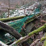 Beschädigte Brücke in der Kreuzbachklamm im Binger Stadtwald thumbnail