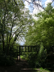 16 05 2013 (136) Basingstoke Canal West of St Johns (Kikishua) Tags: bridge trees green canal towpath day136 basingstokecanal happy365 2013yip 2013pad 16may2013