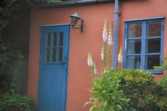 Blue door (Petite Malou) Tags: houses summer vacation beautiful denmark cozy colorful idyllic bornholm paintedhouses