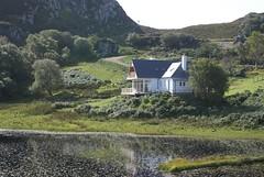 Lochside from Loch