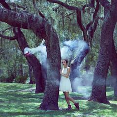 Wanderlust [Explored] (Omalix) Tags: travel viaje trees portrait forest airplane flying arboles smoke magic surreal bosque portraiture magical wander avion viajar 189 volar thewildones2013 flickrxcountry