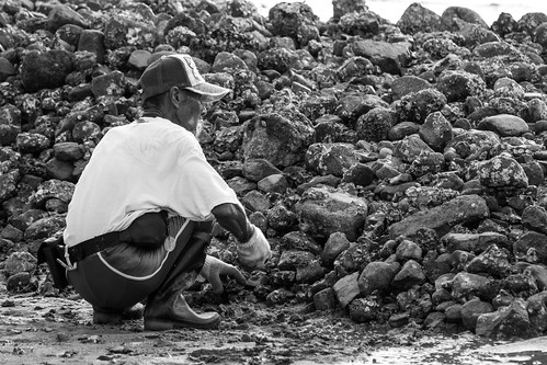 烏溪沙拾石老翁 Stone-picking old men at Wu Kai Sha (Beach) / 香港人 Hong Kong Humans / SML.20130809.7D.50058.BW