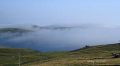 Eshaness_124 (Hlne Peltier) Tags: shetland mainland eshaness
