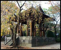 The Daibonsho (DameBoudicca) Tags: autumn fall japan automne temple tokyo bell herbst buddhism campana  otoo nippon   shiba autunno  japon buddhisttemple giappone templo nihon hst cloche tempel tokio glocke boud