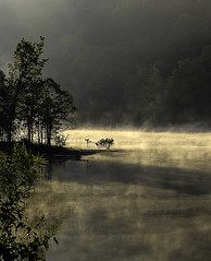 (JLBowers) Tags: morning trees light plants sun mist lake mountains nature water leaves fog sunrise quiet tennessee branches relaxing foggy peaceful foliage bodiesofwater cherokeelake jlbowers