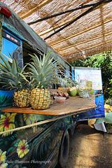 Fruit Stand, Maui, Hawaii (Julie Thurston) Tags: fruit hawaii stand colorful maui hana pineapple tropical shack fruitstand aloha roadtohana tropicalfruit 808 ilovehawaii funadventure