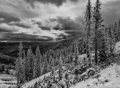 grand Tetons 2013-19-Edit-Edit-Edit-Edit-Edit.jpg (gwhunter1) Tags: tetons snow tetonpass landscapebw