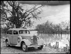 River Murray near Kingston (State Records SA) Tags: blackandwhite car photography australia kingston historical southaustralia vauxhall rivermurray frankhurley srsa staterecords staterecordsofsouthaustralia staterecordsofsa