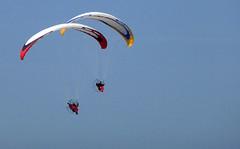 Cte d'Opale, parapentes (Ytierny) Tags: france sport horizontal ciel vol voile parapente pasdecalais littoral loisir ctedopale vollibre ytierny