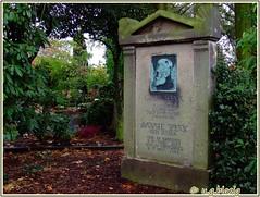 zentralfriedhof in mnster (ugblasig) Tags: friedhof graveyard cemetary grab mnster zentralfriedhof cimitero cimetire cemeterio grber friedhfe