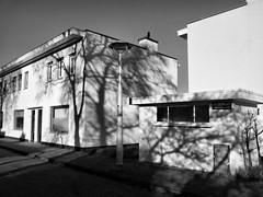 Betondorp (Horizon Enterprises) Tags: trees winter light shadow bw sun sunlight white holland tree netherlands dutch amsterdam concrete town bomen shadows village play nederland plaster schaduw wit mokum middenweg watergraafsmeer betondorp hooistraat