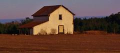 White Barn (Gerry Dincher) Tags: northcarolinahighway130 robesoncounty ruralsouth tobaccobarn tobacco barn oldbarn gerrydincher