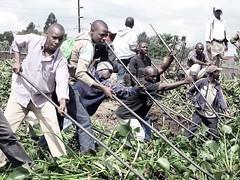 2010 nairobi damn clean up