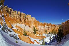 Windows (adam.matsumoto) Tags: blue winter red sky snow utah nationalpark nikon sandstone bluesky canyon hoodoo bryce brycecanyon bcnp d5100