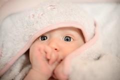 Alix (Benoit Andreani - Playaz) Tags: baby studio benoit bebe d600 2470 strobist andreani