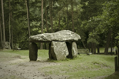 Dolmen (alpha du centaure) Tags: macro architecture de photos picture images dome dmc photographe visuels photosofart lumixpanasonic naturalphotos dmcfz18 alphaducentaure photosartistique stephanemarechal photosdenature photosdart photosartistic fz38panasonicphotographerauvergnemassif centralfrancenaturebrumevgtationsapinverduremauvais tempsst nectairechateaudolmendruidepuy
