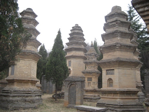 zhenshou 101
