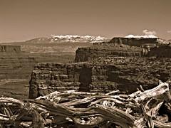 Wood, stone, snow and sky (jimsawthat) Tags: sepia rural utah canyon erosion highdesert canyonlandsnationalpark moab islandinthesky