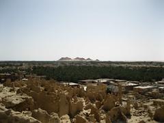 IMG_5122 (slm lm l Shzly) Tags: egypt oasis siwa siwaoasis   thesiwaoasisisanoasisinegypt locatedbetweentheqattaradepressionandtheegyptiansandseainthelibyandesert nearly50kmeastofthelibyanborder and560kmfromcairo mudbrickhousesintheoldtownofshaliastreetattheswendoftheshali egyptdesertsanddunesinthesouthofsiwasiwasaltlakemosqueataghurmiviewthroughthetempleoftheoracleofamuntogebeleldakrourapanoramicviewofthesiwaoasisin2005oasisinegyptthesiwaoasistempleofamunatummubeidasiw