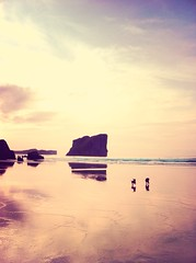 Summertime (AnaCerdaca) Tags: sunset summer espaa beach dogs spain asturias playa
