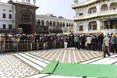 Queue of devotees along with Akal Takht inside the Golden Temple in Amritsar (Ashish A) Tags: india building canon buildings carpet religious temple asia religion crowd queue sikh devotee devotees amritsar digitalslr sikhism goldentemple canoncamera religioussymbol akaltakht goldentempleinamritsar canon650d canont4i peopleinaqueue peoplewearingturbans meninaqueue peopleinsidegoldentemple metalseparators queuesformenandwomen womeninaqueue