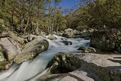 Agua salvaje corriendo libre (IV) / Wild Water Running Free #4