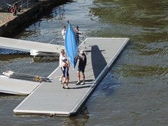 Frankfurt - Main (Anita Pravits) Tags: river germany deutschland town riverside frankfurt main stadt rowboat ufer rowingboat oarsmen ruderboot ruderer flus flusufer