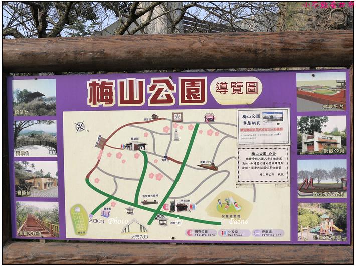 嘉義梅山空中走廊 (16).JPG