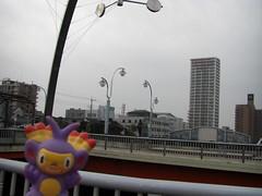 Ambipom in Kasukabe, Saitama 5 (Kasadera) Tags: toys figure pokemon pokmon  kasukabe   pokemonkids  ambipom     ambidiffel capidextre