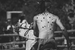 Rancho Kiowa 2015 – 4 (Aimar Ruiz (AKA ikeamendi)) Tags: party horses blackandwhite horse america portraits canon caballos cow cowboy texas fiesta cows indian valle bull bulls story riding american western toros americana indians rider burgos mena rancho vaca horseriding vacas reportage estadosunidos sombreros vaquero tejas kiowa reportaje exhibición siones 550d villasana suerño sionesdemena