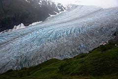 Exit Glacier (Lee Petersen) Tags: alaska kenai kenaifjordsnationalpark harding icefield trail hike hiking glacier ice mountains chugach summer rainy
