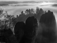 Mystical rocks in the fog (Saxony Pictures by Thomas Kriehn) Tags: bastei elbsandsteingebirge felsen rock mountains gebirge nebel fog 365 365tage 365days project365 3652015 365daysproject fotodestages photooftheday 366 366tage 366days project366 3662015 366daysproject sw bw schwarz weis black white schwarzweis noiretblanc einfarbig olympus omd em5 mft landscape landschaft outdoor deutschland germany allemagne dresden sachsen saxony wolken clouds himmel sky heaven