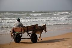 Que mon âne soit cool... (mars-chri) Tags: pêcheur dakar sénégal fabuleuse