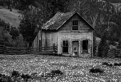 The Old Farmhouse (Katrina Wright) Tags: quilchena redbarn1 oldfarmhouse weathered worn decrepit decay rundown old beaten damaged bw nb monochrome windows door farm field fence