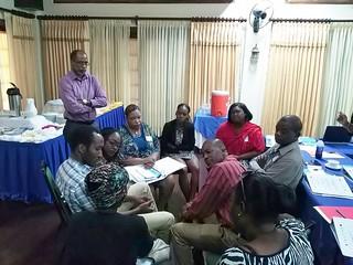 Local Capacity Initiative (LCI) Activities