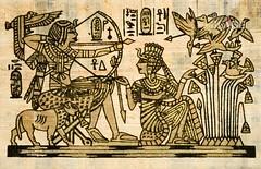 Papyrus (shadowbilgisayar) Tags: pyramids africa cairo papyrus egypt egyptian arabian old desert ancient torn queen element layer materials wall drawings texture color fibrous paper art sheet background natural detail fiber textured fibers museum material pharaoh hieroglyphs anubis handmade script russianfederation