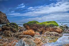 Wearin' O' The Green (Michael F. Nyiri) Tags: malibu elmatadorbeach pacificocean southerncalifornia california ocean