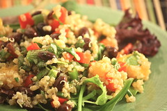 quinoa salad with black beans and mango (Paige MacKenzie) Tags: food cooking vegetables fruit dinner lunch salad vegan beans healthy grain fresh delicious health mango vegetarian quinoa organic diet blackbeans ancientgrain veganomicon