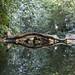 water reflection - toronto zoo - 1