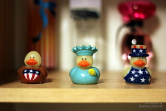 Day 210: American Ducks (jeanne.beanie) Tags: usa america photography 50mm bokeh ducks patriotic american project365 challenge365