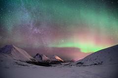 magic nightlight (John A.Hemmingsen) Tags: winter night stars arctic aurora nordnorge northernlights auroraborealis tromsø troms tromvik arcticlight tokina1116 nikond7000 tromtind