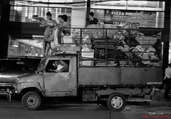 Guys on Truck (colinleezl) Tags: truck 50mm nikon san juan philippines august guys on d600 2013 f18g