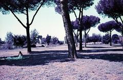 Parco degli Acquedotti (Gothic74) Tags: italy rome roma nikon italia nikkor archeologia fm2n 1835mm parcodegliacquedotti gothic666 lomochromepurple